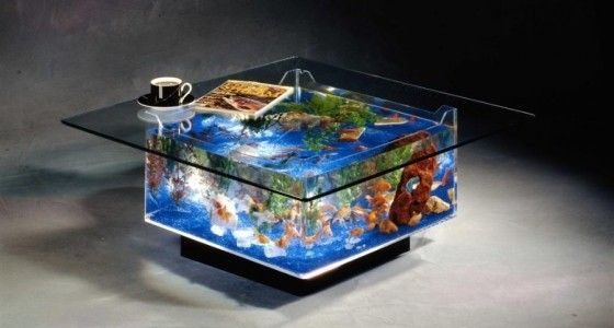 Fish Tank inside a table
