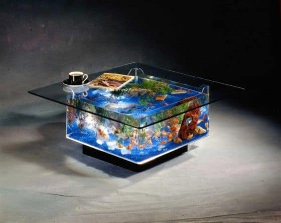 fish tank coffee table. Coffee Table Fish Tank