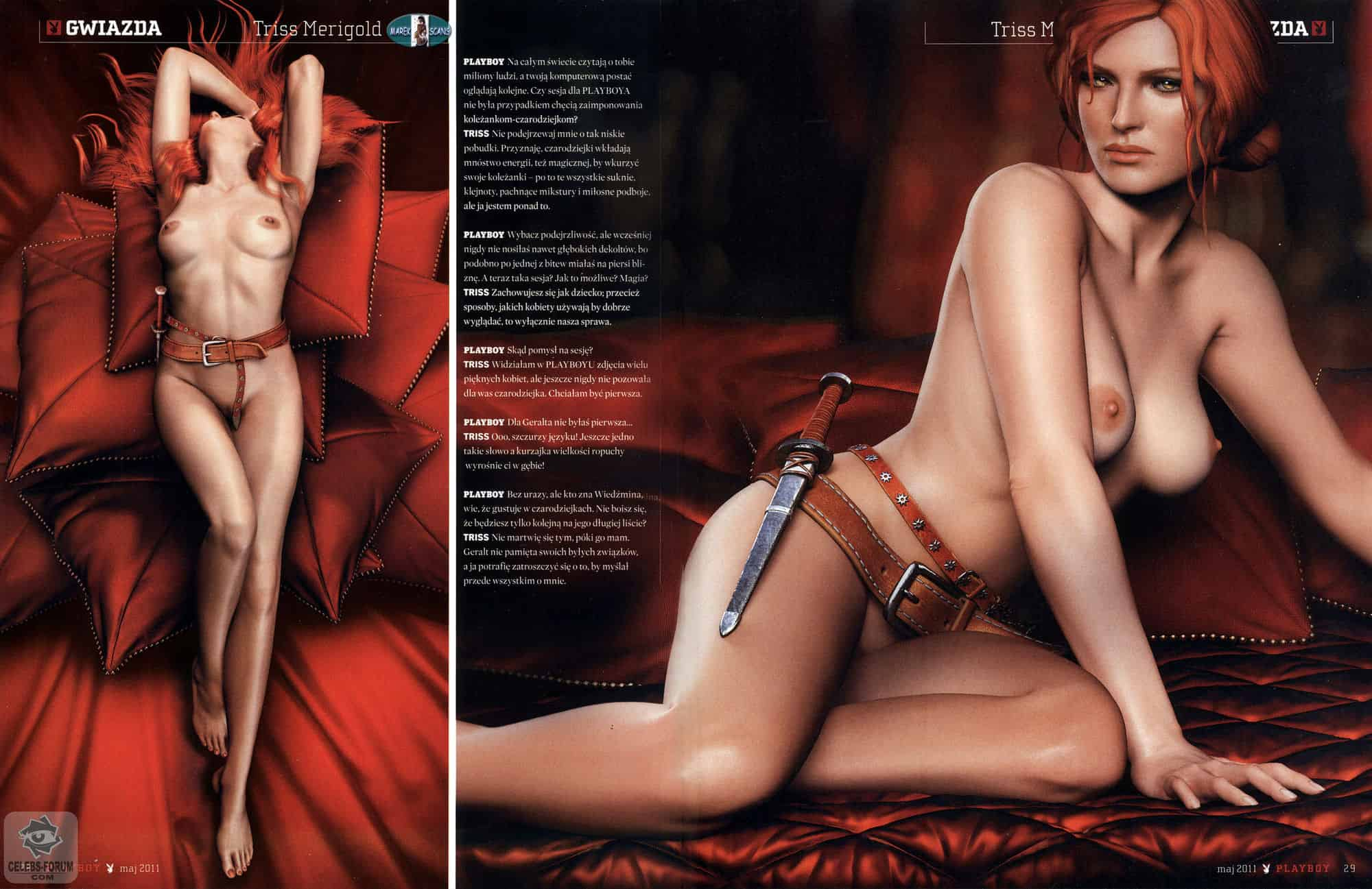 Triss Merigold Breasts Leaning Back Again Polish Playboy