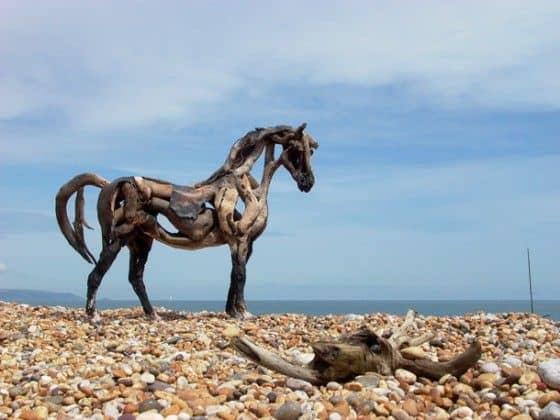 horse on a beach