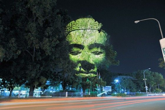 3d-tree-projections-cambodian-trees-clement-briend04