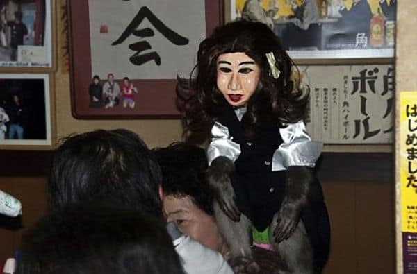 monkeys-waiters-kayabuki-restaurant-japan01