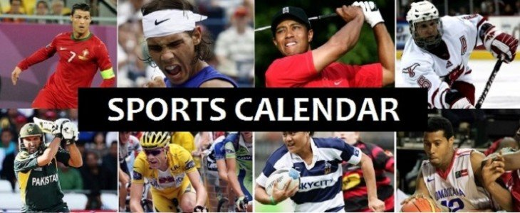 popular sports of 2015