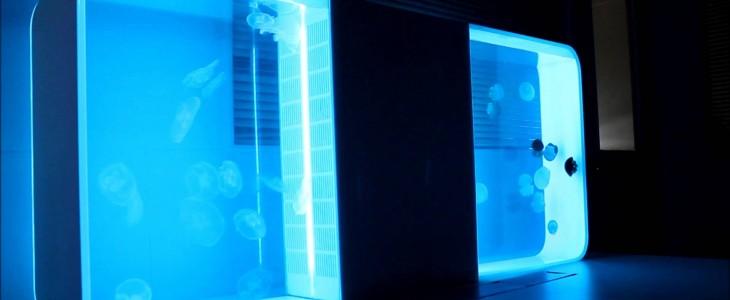 Pulse 80 aquarium jellyfish