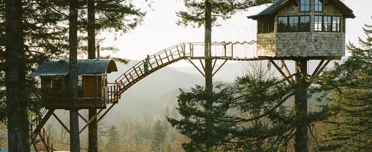dream treehosue