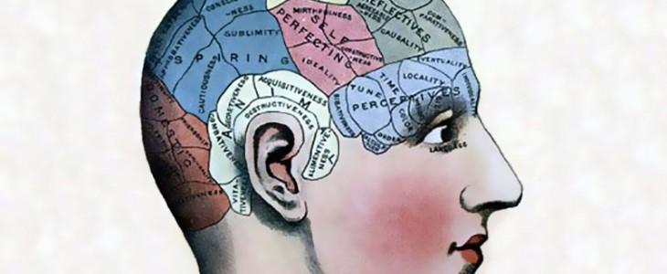 long-term-memory-brain